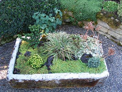 Jardins Miniatures jardin miniature